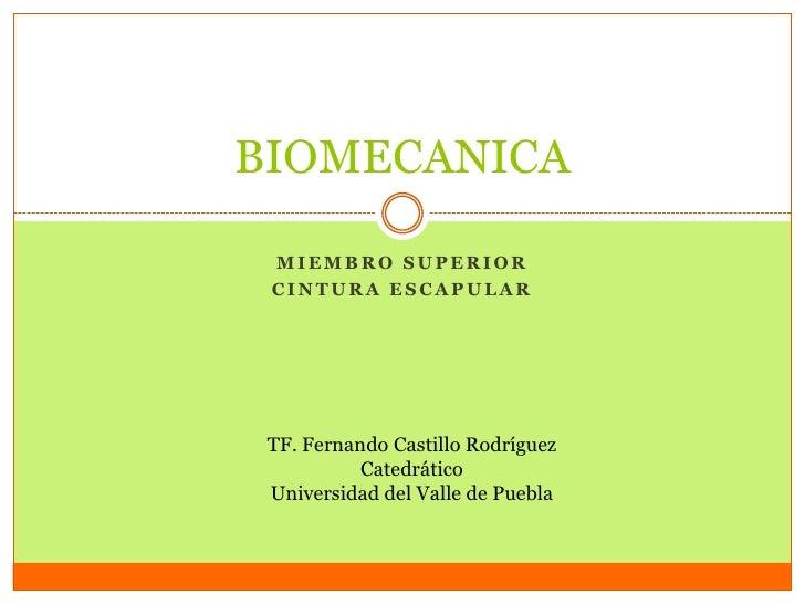 BIOMECANICA MIEMBRO SUPERIOR CINTURA ESCAPULAR TF. Fernando Castillo Rodríguez           Catedrático Universidad del Valle...