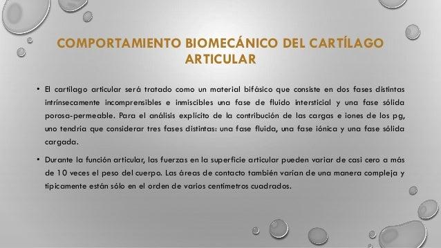 Mutabilidad biomecanica