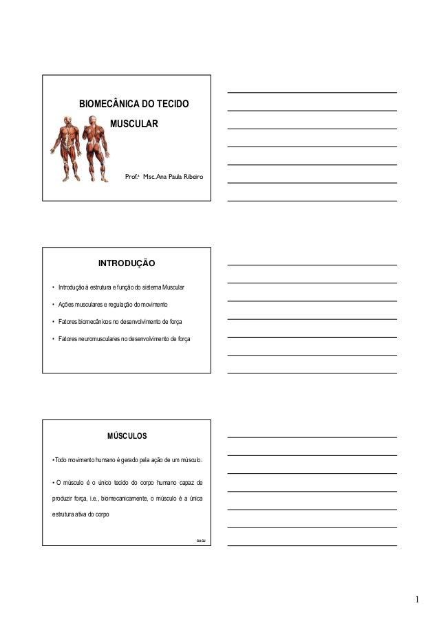 1 BIOMECÂNICA DO TECIDO MUSCULAR Prof.a Msc.Ana Paula Ribeiro INTRODUÇÃO • Introdução à estrutura e função do sistema Musc...