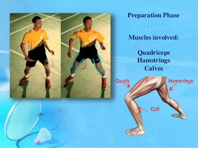 an analysis of an article about muscles Freestyle swimming muscle analysis 9 swimmer rotates his or her head varies, depending on the swimmers preference however, when the swimmer uses cervical rotation, it is contralateral to the side of.