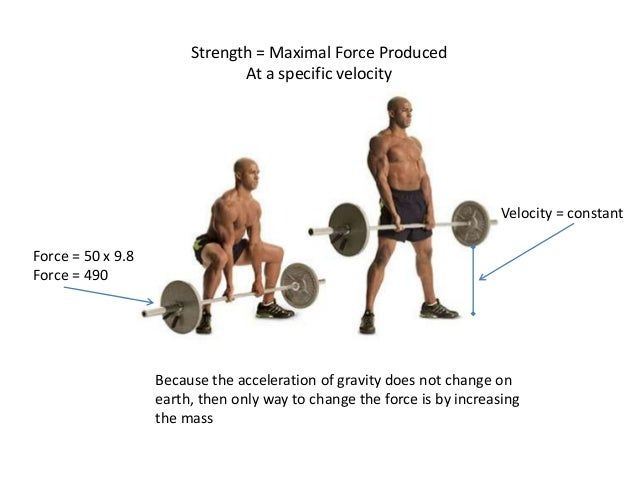 Which muscles do deadlifts work?