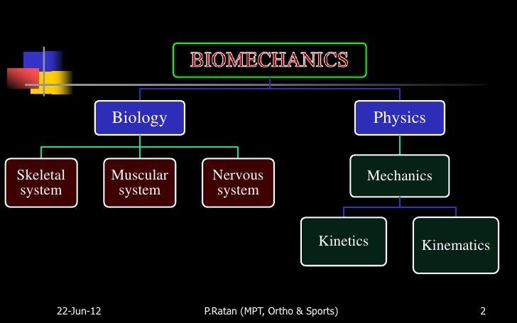 An Evidence-Based Videotaped Running Biomechanics Analysis