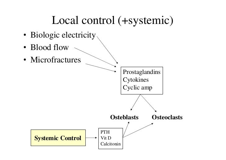 Local control (+systemic)• Biologic electricity• Blood flow• Microfractures                                      Prostagla...