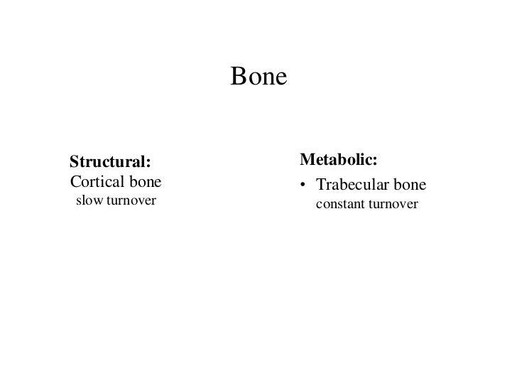 BoneStructural:            Metabolic:Cortical bone          • Trabecular boneslow turnover            constant turnover