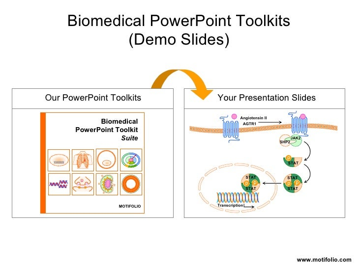 Our PowerPoint Toolkits Your Presentation Slides www.motifolio.com STAT STAT STAT STAT STAT JAK2 SHP2 Transcription AGTR1 ...