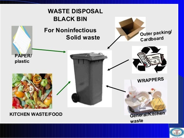 At Your Disposal How to Use Up Kitchen Waste  ABOUT US