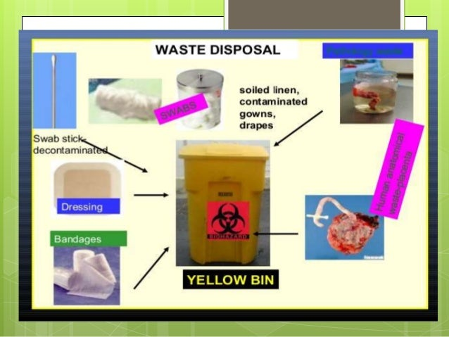 Management Of Bio Medical Waste. Auto Insurance In Colorado Springs. 5 Min Oil Change Coupon Best Online Databases. Open Source Workflow Software. Medical Assistant Online Training. Jetpay Merchant Services Gap Medical Coverage. Motorcycle Theft Insurance Faxing From Email. Breast Lift With Implants Cost. Vatterott College Online Old Hickory Gun Club