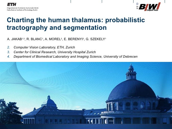 Charting the human thalamus: probabilistic tractography and segmentation <ul><li>A. JAKAB 1,3 , R. BLANC 1 , A. MOREL 2 , ...