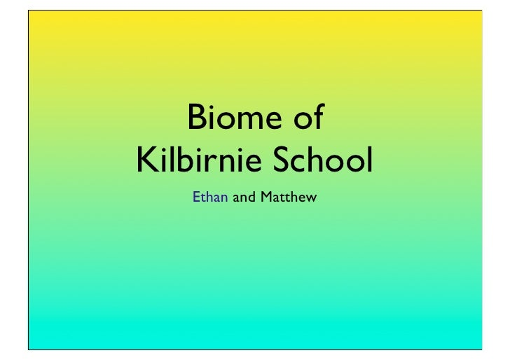 Biome of Kilbirnie School    Ethan and Matthew