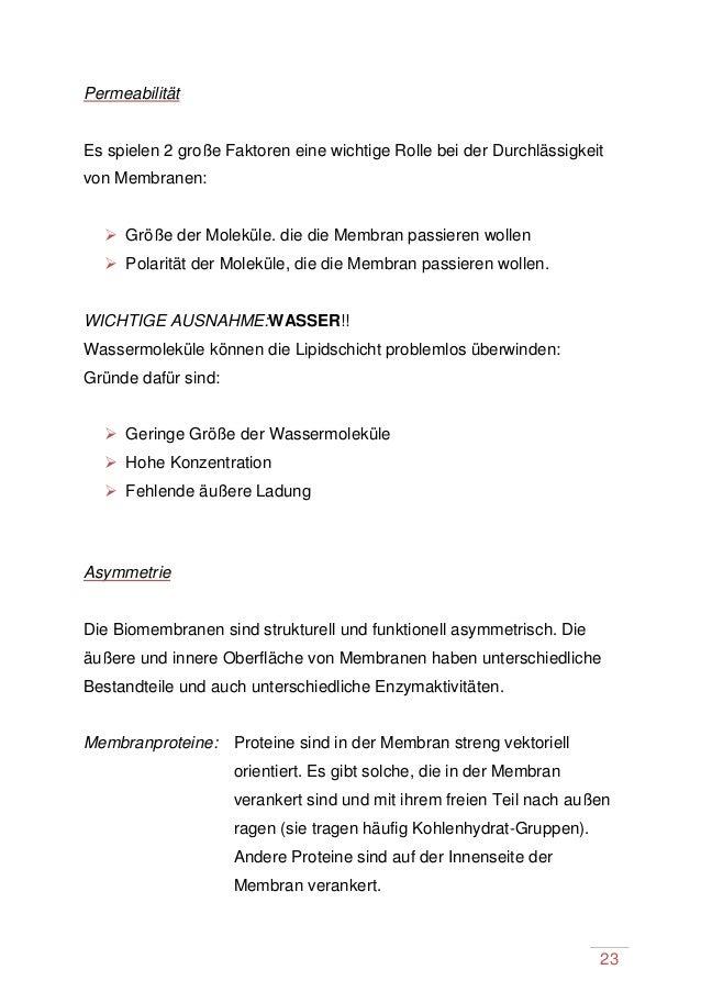 Biomembran sengel maturaporjekt2014