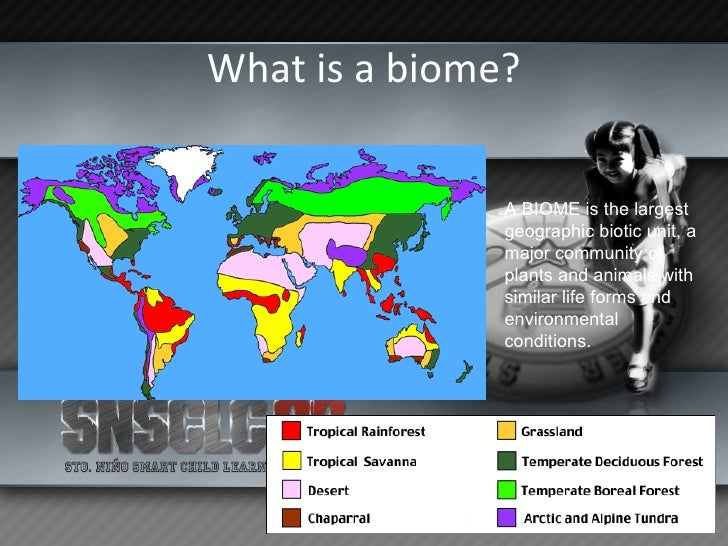 Biomes Slide 2