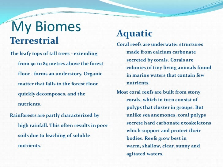 biology quadrats essay example Aqa a geography fieldwork itinerary example 2  geography biology geology business studies expand all  use of transects or quadrats:.