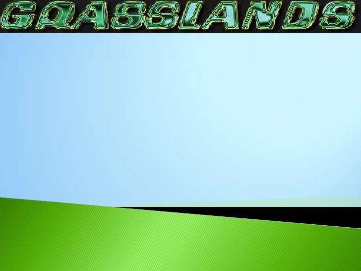 grassland mitchell