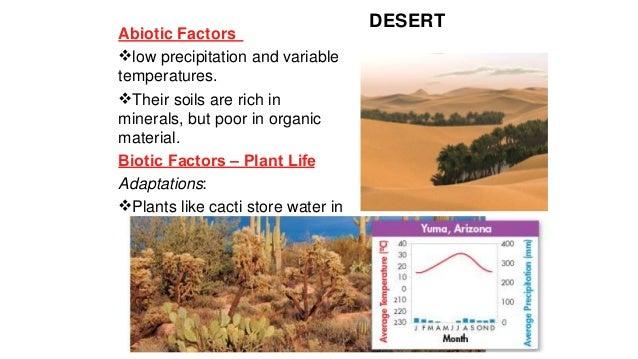 Biotic features in an open grassland