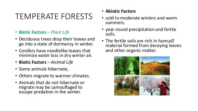 Biomes Abiotic And Biotic Parts