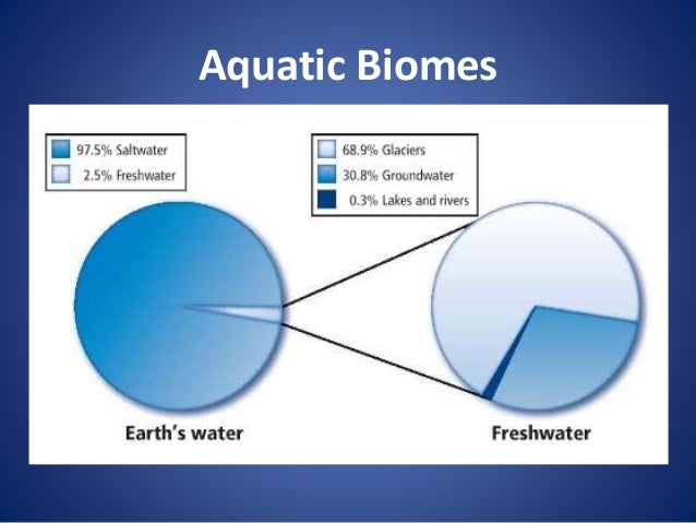 an paper on types of freshwater biomes In freshwater biomes phytoplankton is a photosynthetic aquatic algae and it provides food for a wide range of species even though it is somewhat beneficial, too much of it can cause a lot of issues even though it is somewhat beneficial, too much of it can cause a lot of issues.