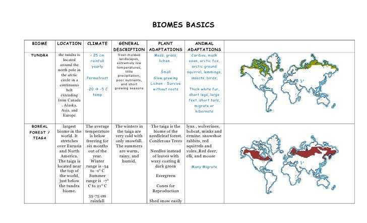 BIOMES BASICS  BIOME      LOCATION        CLIMATE        GENERAL      PLANT                      ANIMAL                   ...