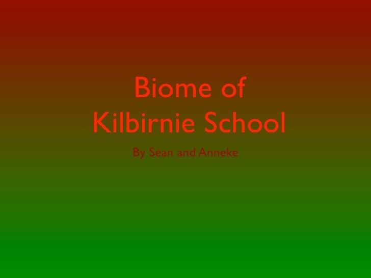 Biome of Kilbirnie School    By Sean and Anneke