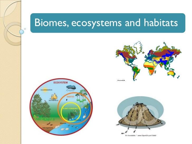 Biomes, ecosystems and habitats quiz 1