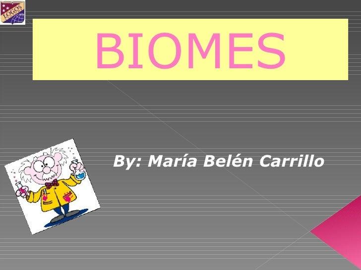 By: María Belén Carrillo BIOMES