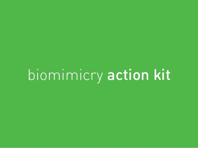 biomimicry action kit