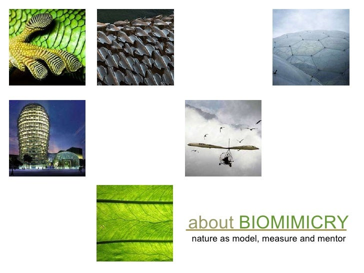 about   BIOMIMICRY nature as model, measure and mentor