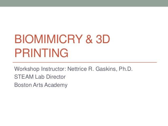 BIOMIMICRY & 3D PRINTING Workshop Instructor: Nettrice R. Gaskins, Ph.D. STEAM Lab Director Boston Arts Academy