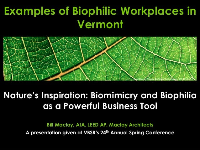 Nature's Inspiration: Biomimicry and Biophilia as a Powerful Business Tool Bill Maclay, AIA, LEED AP, Maclay Architects A ...