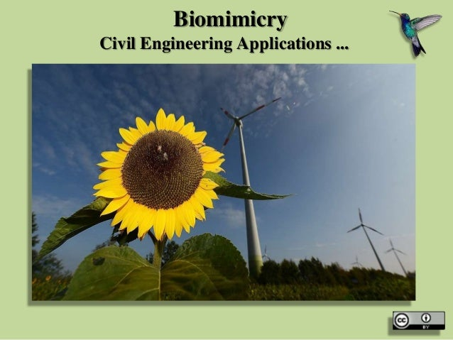 Biomimicry Civil Engineering Applications ...