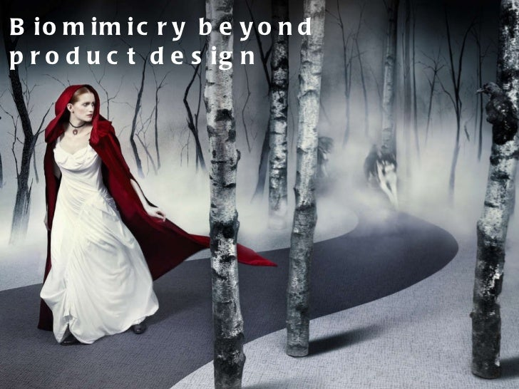 Biomimicry beyond product design