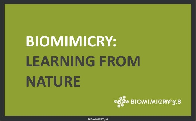 BIOMIMICRY: LEARNING FROM NATURE April 2012