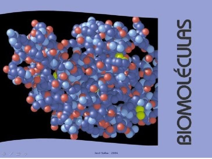 Biomoléculas Slide 1