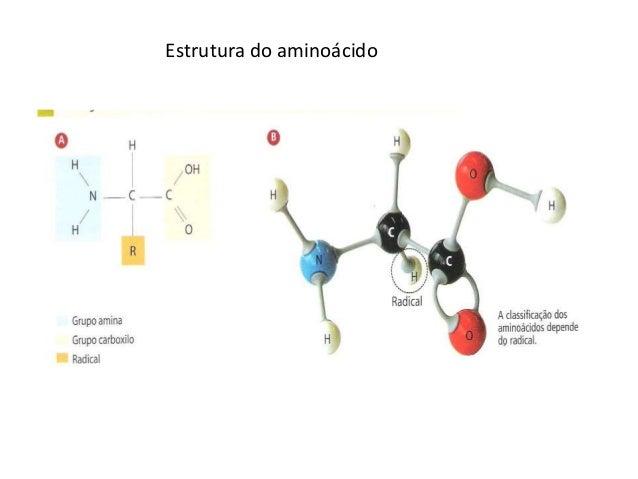Estrutura do aminoácido