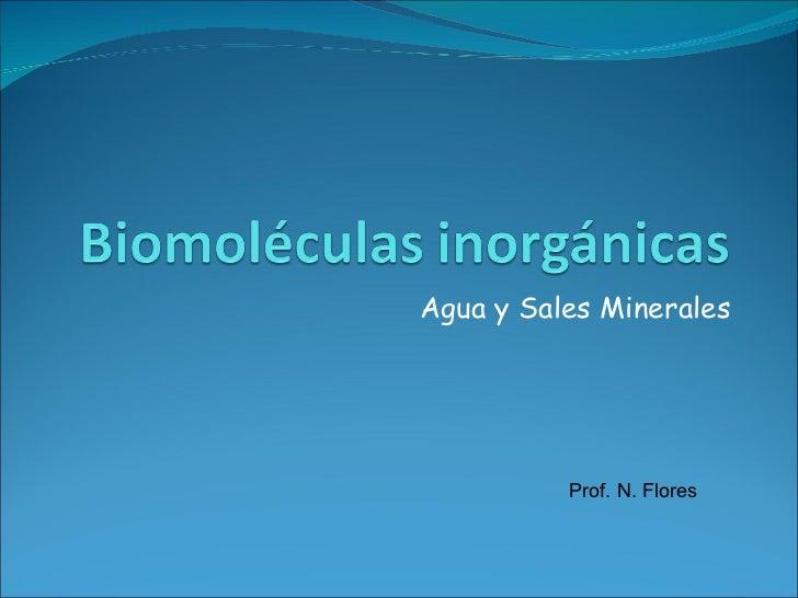 Agua y Sales Minerales Prof. N. Flores