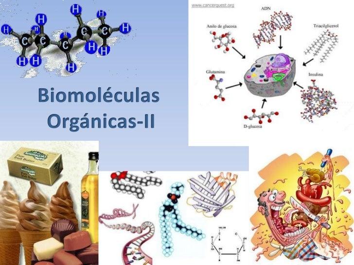 C, H, O, N y   No se disuelven en agua,P              formando                estructuras               denominadas micela...