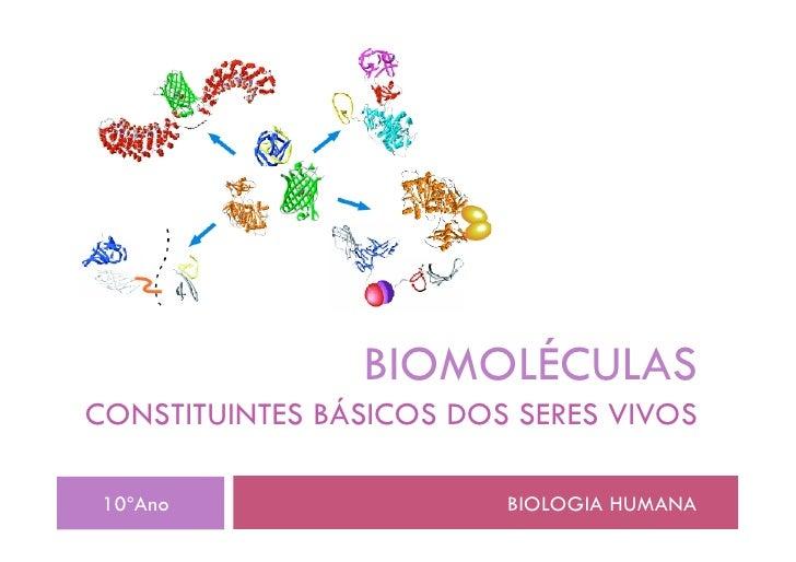 BIOMOLÉCULAS CONSTITUINTES BÁSICOS DOS SERES VIVOS   10ºAno                  BIOLOGIA HUMANA