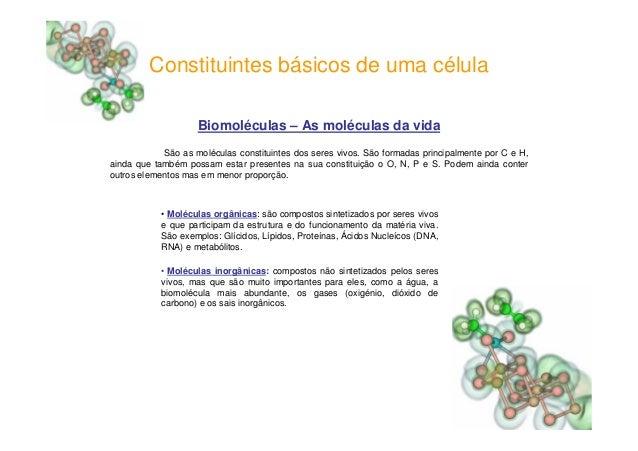 Constituintes básicos de uma célulaBiomoléculas – As moléculas da vidaSão as moléculas constituintes dos seres vivos. São ...