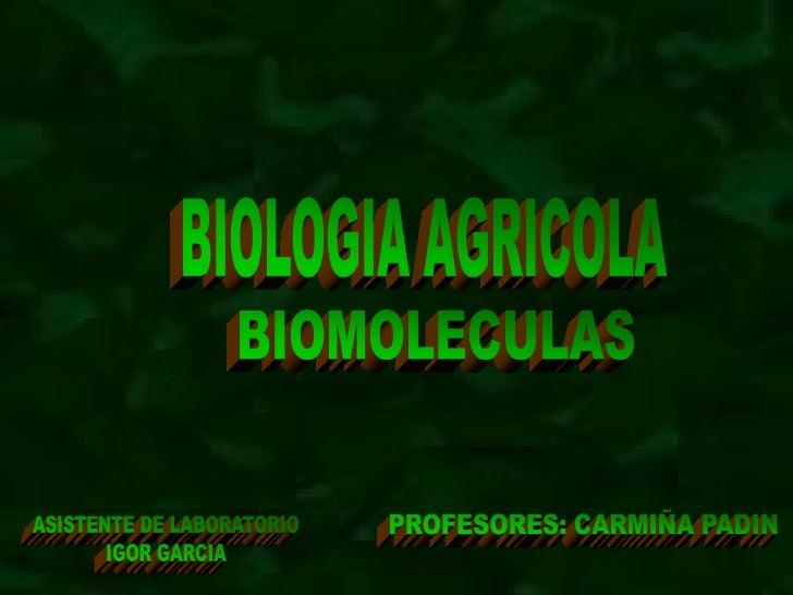 BIOELEMENTOS  Se denominan elementos biogénicos o bioelementos a  aquellos elementos químicos que forman parte de los sere...