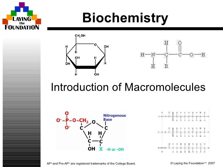 Biochemistry Introduction of Macromolecules