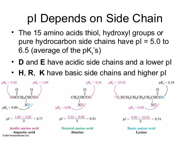 Protein gel Analysis - Creative Proteomics