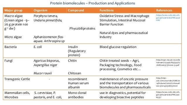 what type of biomolecule is insulin