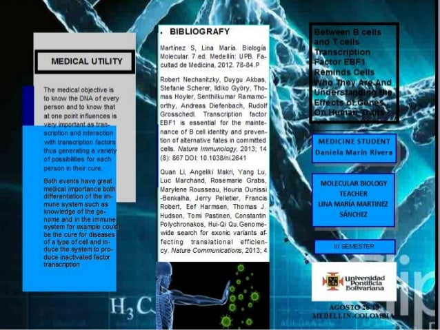 Biomol presentacion 1 Slide 2