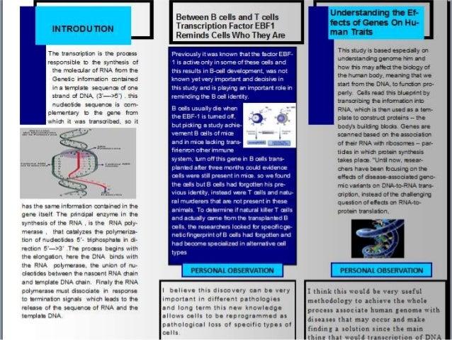 Biomol presentacion 1 Slide 3