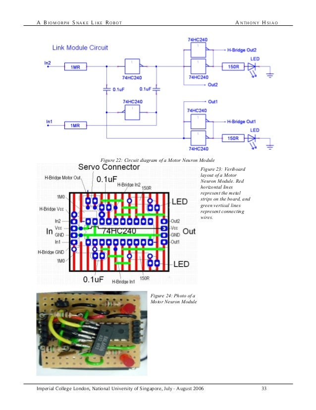 biomorph snake robot sea snake diagram snake robot diagram