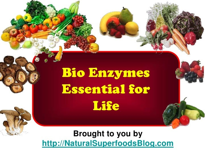 Bio Enzymes     Essential for         Life          Brought to you by http://NaturalSuperfoodsBlog.com
