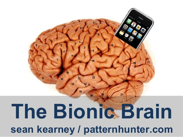 The Bionic Brainsean kearney / patternhunter.com