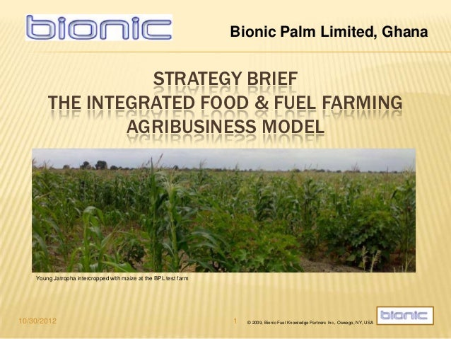 Bionic Palm Limited, Ghana                  STRATEGY BRIEF        THE INTEGRATED FOOD & FUEL FARMING                AGRIBU...