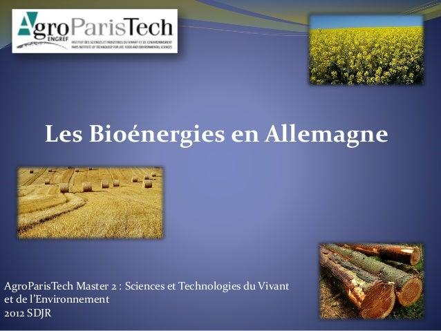 2012 SDJR Les Bioénergies en Allemagne AgroParisTech Master 2 : Sciences et Technologies du Vivant et de l'Environnement