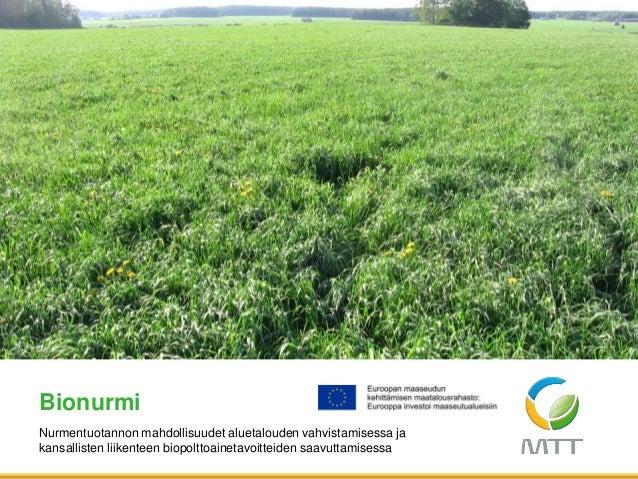 Nurmentuotannon mahdollisuudet aluetalouden vahvistamisessa ja kansallisten liikenteen biopolttoainetavoitteiden saavuttam...