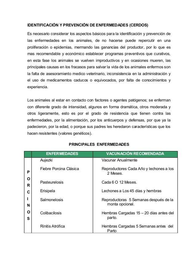 IDENTIFICACIÓN Y PREVENCIÓN DE ENFERMEDADES (CERDOS) Es necesario considerar los aspectos básicos para la identificación y...